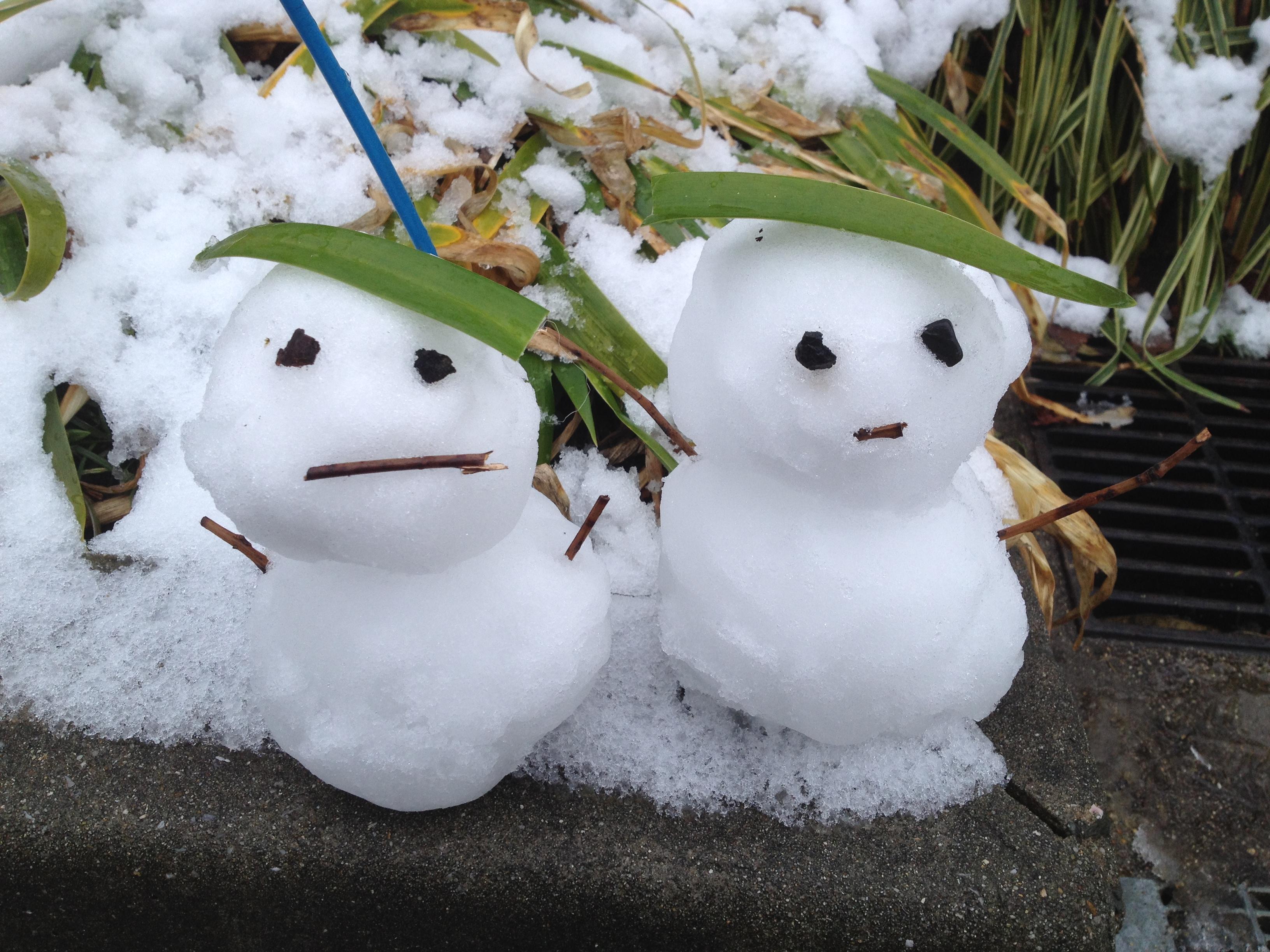 雪だるま( ´ ▽ ` )ノ